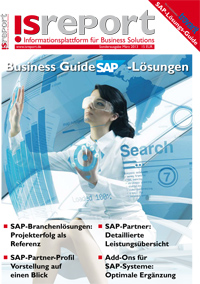 Business_Guide_SAP_2013