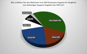 dsag-support-umfrage_screen1