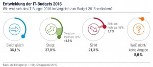 CapGemini-Entwickl- IT-Budget