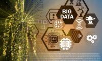 Künstliche Intelligenz testet Software auf Fehler